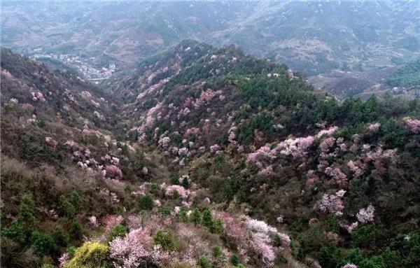 建德旅游春季巡回促销第二站走进苏州