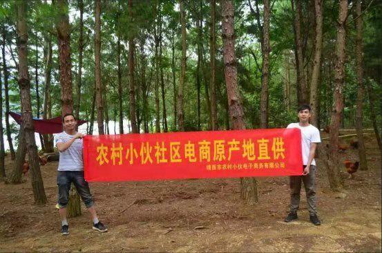 广西靖西将加快建设乡村产业园区和产业集群,推动乡村一二三产业融合发展